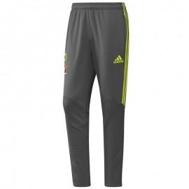 Chelsea Pantalon Football Homme Gris