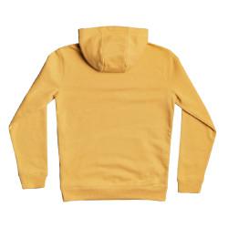 Sweat jaune garçon Quiksilver Big Logo Youth pas cher