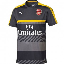 Maillot Entrainement Arsenal Football Gris Homme Puma