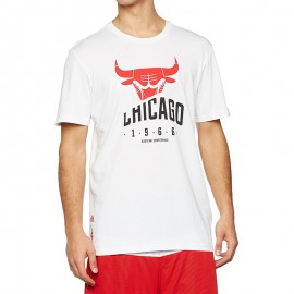 Tee Shirt Chicago Bulls Blanc Basketball Homme