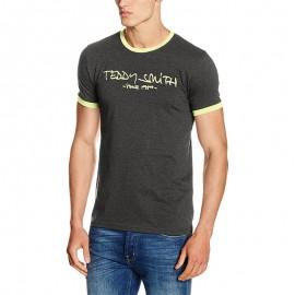 Tee-shirt Ticlass Gris Homme Teddy Smith