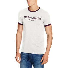 Tee-shirt Ticlass 3 Gris Homme Teddy Smith